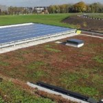 Green Roof - Notts